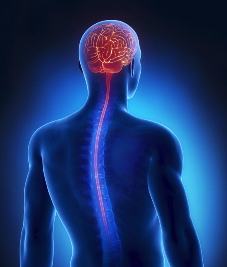 нейрохирургия в Ассаф-Рофе